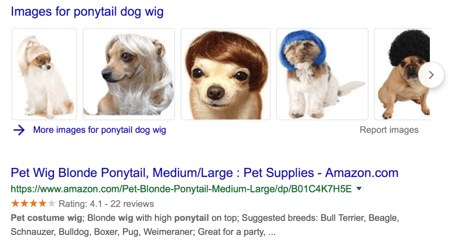 dog-wig-product-schema-markup-example